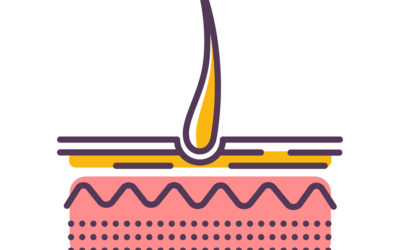 Haarausfall mit Wurzel – Was tun? Was sind die Gründe?